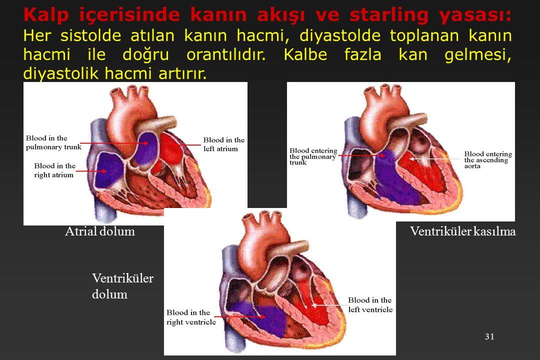 31 Atrial dolum Ventriküler dolum Ventriküler kasılma Kalp içerisinde kanın akışı ve starling yasası: Her sistolde atılan kanın hacmi, diyastolde toplanan kanın hacmi ile doğru orantılıdır.