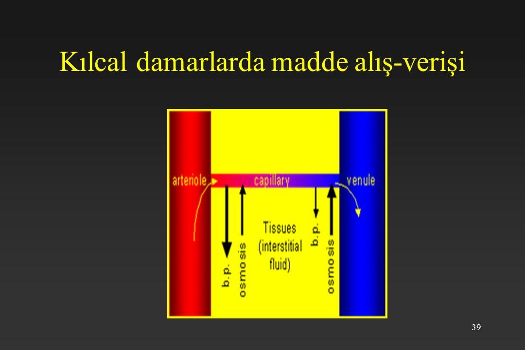 39 Kılcal damarlarda madde alış-verişi