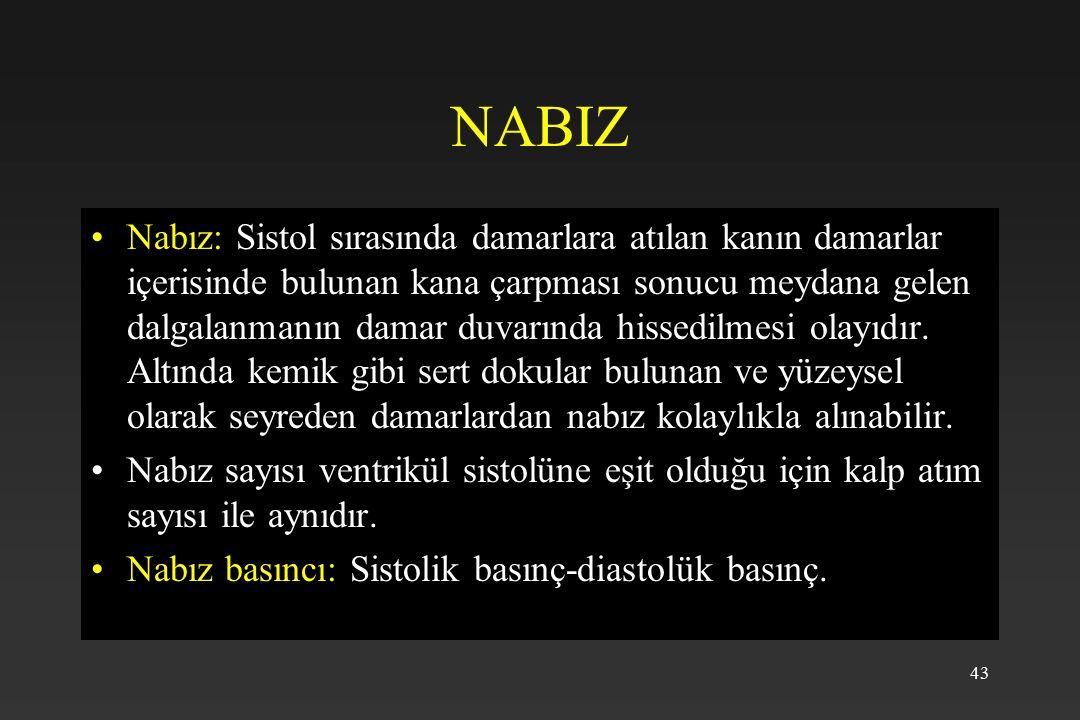43 NABIZ Nabız: Sistol sırasında damarlara atılan kanın damarlar içerisinde bulunan kana çarpması sonucu meydana gelen dalgalanmanın damar duvarında hissedilmesi olayıdır.