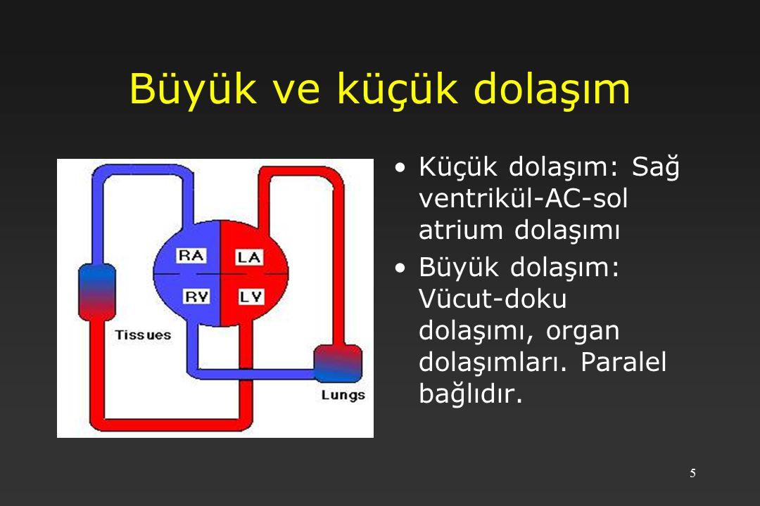 5 Büyük ve küçük dolaşım Küçük dolaşım: Sağ ventrikül-AC-sol atrium dolaşımı Büyük dolaşım: Vücut-doku dolaşımı, organ dolaşımları. Paralel bağlıdır.