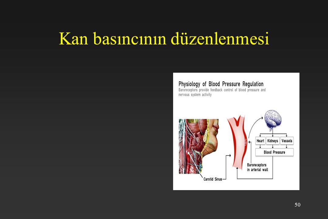 50 Kan basıncının düzenlenmesi