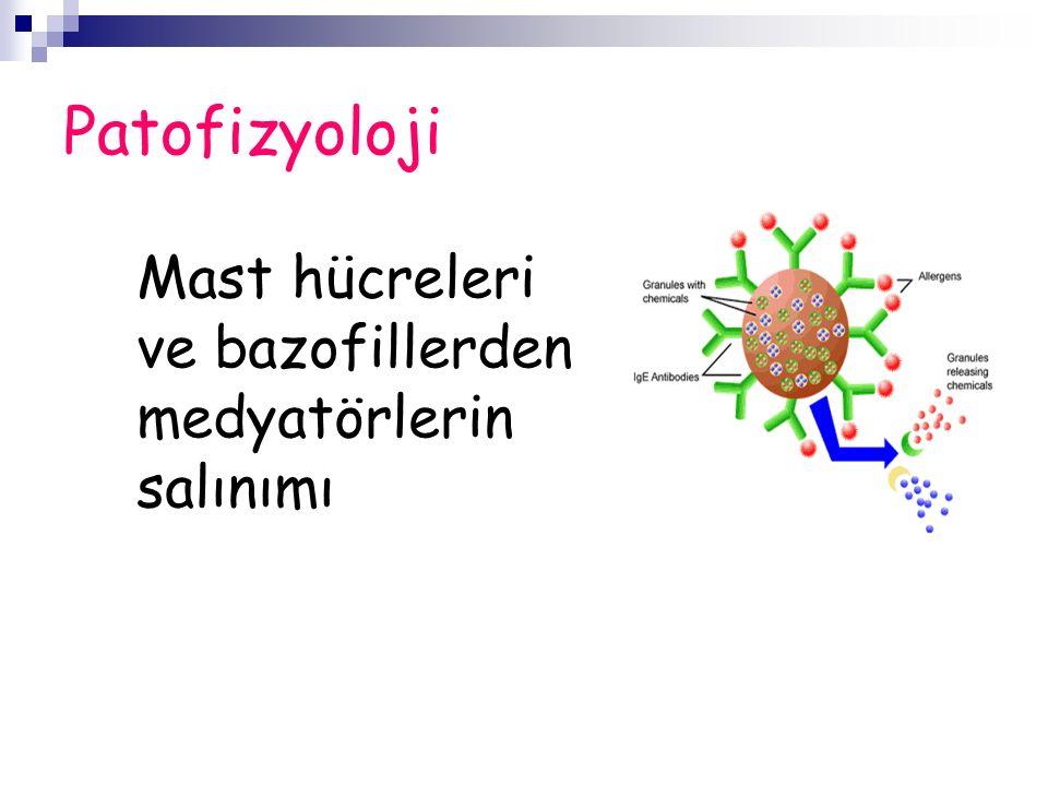 Patofizyoloji Mast hücreleri ve bazofillerden medyatörlerin salınımı