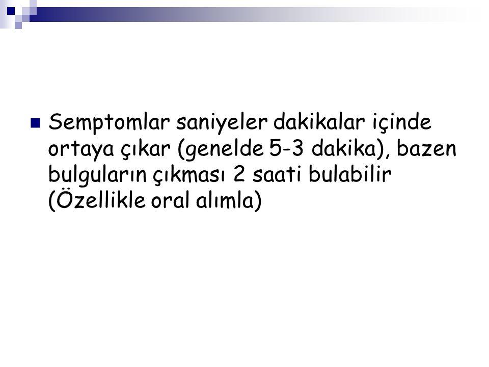 Sayın Dr. İbrahim Topal