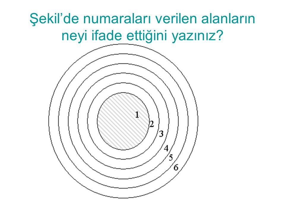 Şekil'de numaraları verilen alanların neyi ifade ettiğini yazınız?