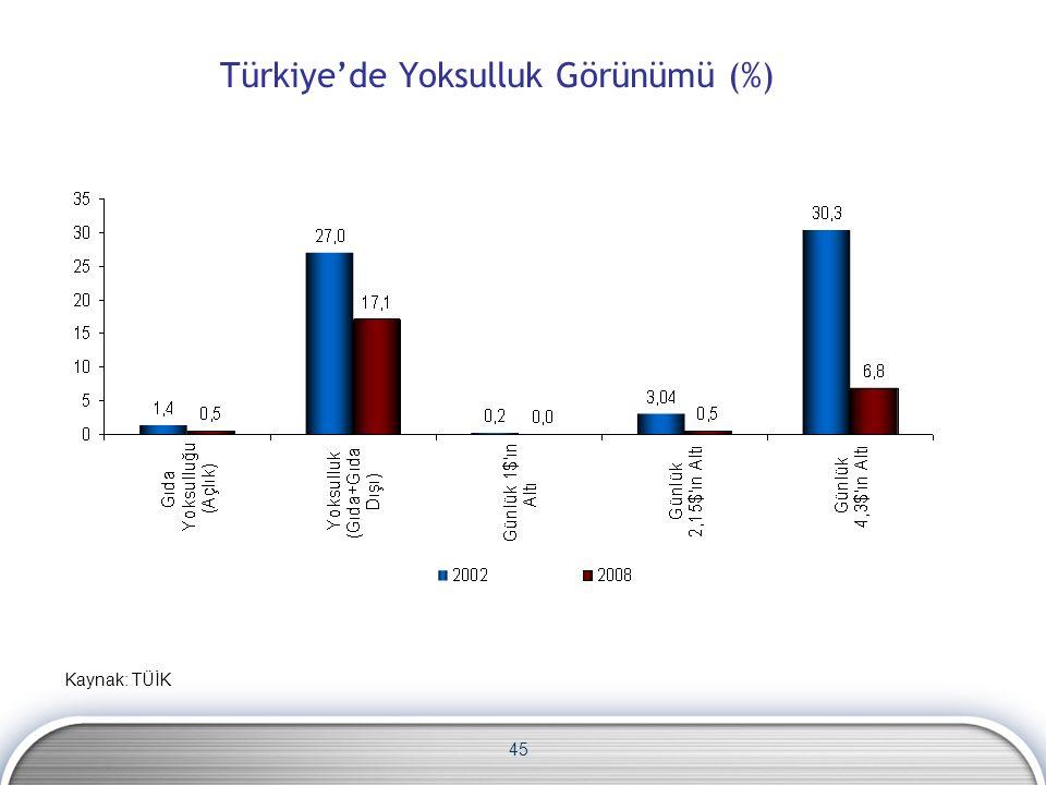 45 Türkiye'de Yoksulluk Görünümü (%) Kaynak: TÜİK