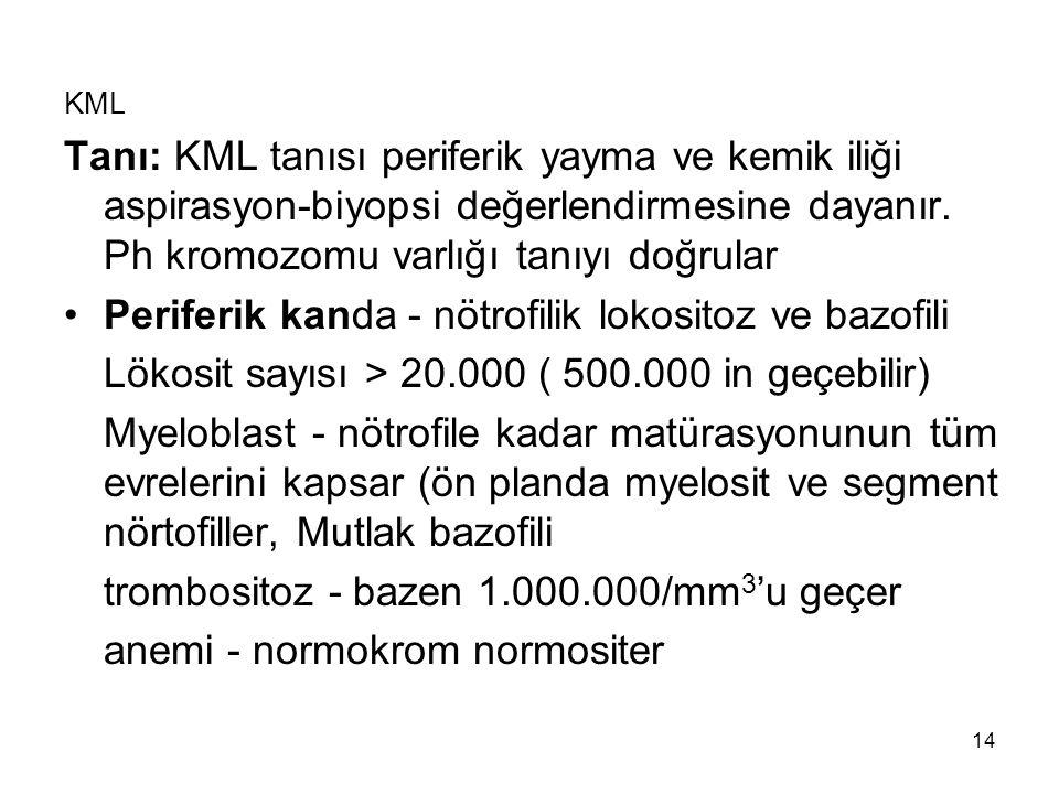 14 KML Tanı: KML tanısı periferik yayma ve kemik iliği aspirasyon-biyopsi değerlendirmesine dayanır.