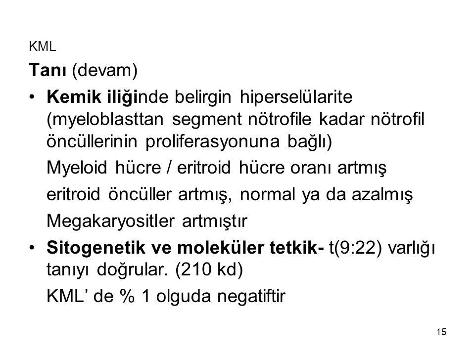 15 KML Tanı (devam) Kemik iliğinde belirgin hiperselülarite (myeloblasttan segment nötrofile kadar nötrofil öncüllerinin proliferasyonuna bağlı) Myelo