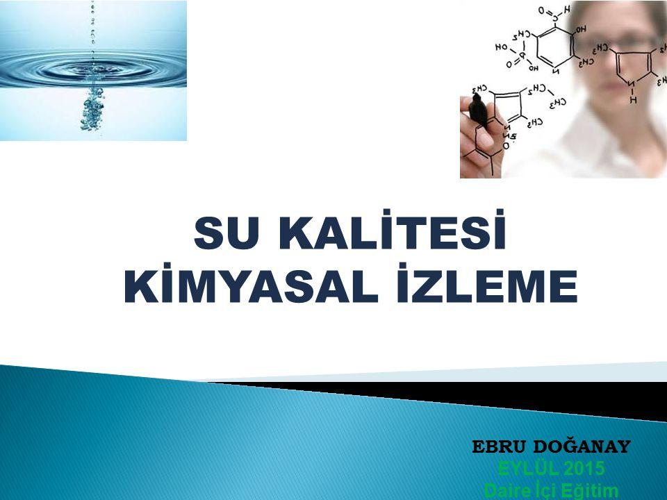  Giriş  İzleme Kimyasal İzleme  Su Çerçeve Direktifi  Türkiye'de İzleme  İzleme Sonuçlarının Değerlendirilmesi  Verilerin Değerlendirilmesi