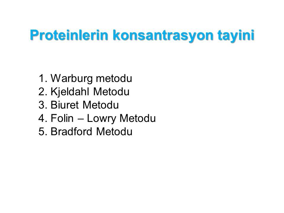 Proteinlerin konsantrasyon tayini 1. Warburg metodu 2. Kjeldahl Metodu 3. Biuret Metodu 4. Folin – Lowry Metodu 5. Bradford Metodu