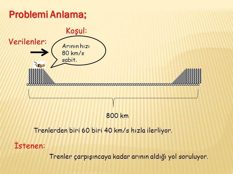 Arının hızı 80 km/s sabit. 800 km Trenlerden biri 60 biri 40 km/s hızla ilerliyor.