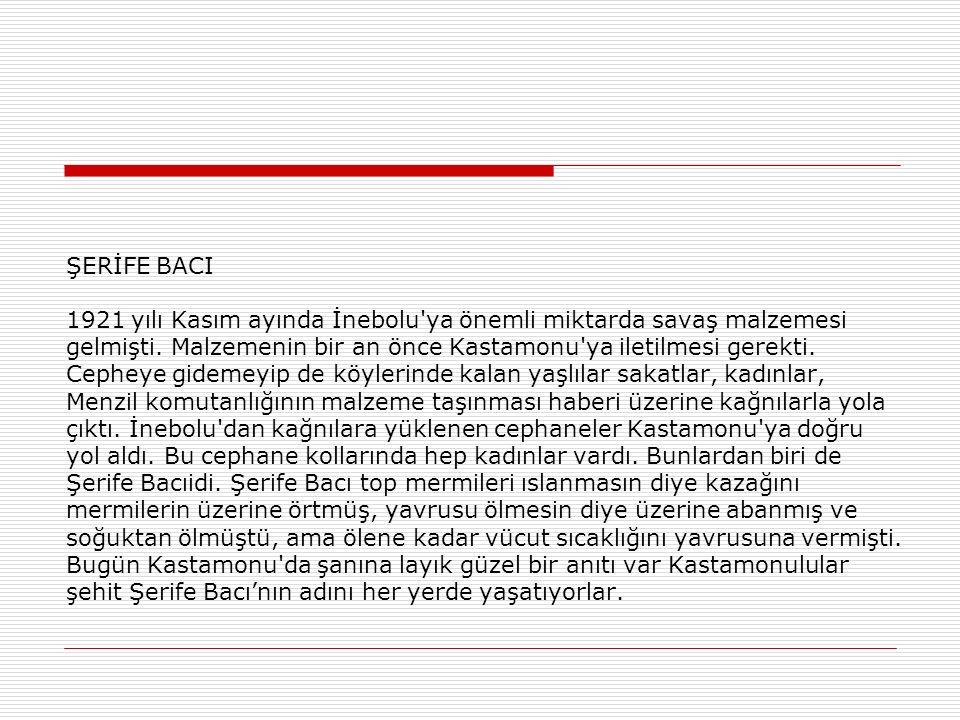 SÜREYYA SÜLÜN HANIM İşte kahraman Türk kadınlarından bir kahraman; Milli Mücadele yıldızlarından bir yıldız daha: Süreyya Sülün Hanım...Van'da doğmuştur.