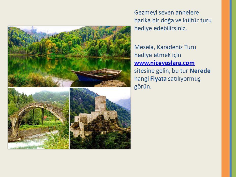 Gezmeyi seven annelere harika bir doğa ve kültür turu hediye edebilirsiniz. Mesela, Karadeniz Turu hediye etmek için www.niceyaslara.com sitesine geli