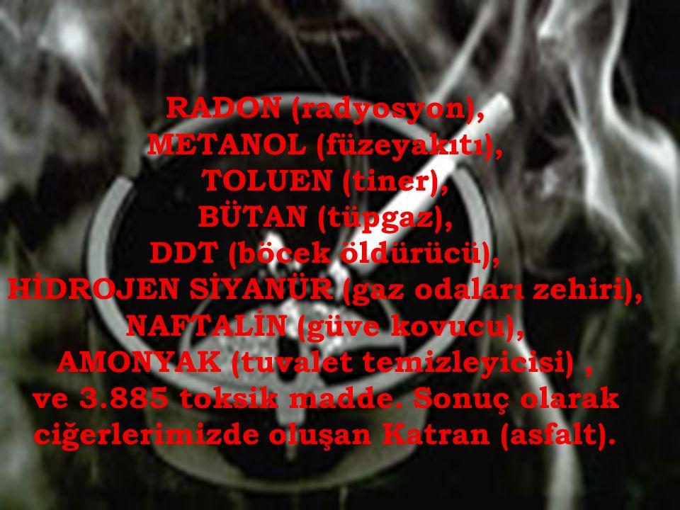 RADON (radyosyon), METANOL (füzeyakıtı), TOLUEN (tiner), BÜTAN (tüpgaz), DDT (böcek öldürücü), HİDROJEN SİYANÜR (gaz odaları zehiri), NAFTALİN (güve kovucu), AMONYAK (tuvalet temizleyicisi), ve 3.885 toksik madde.