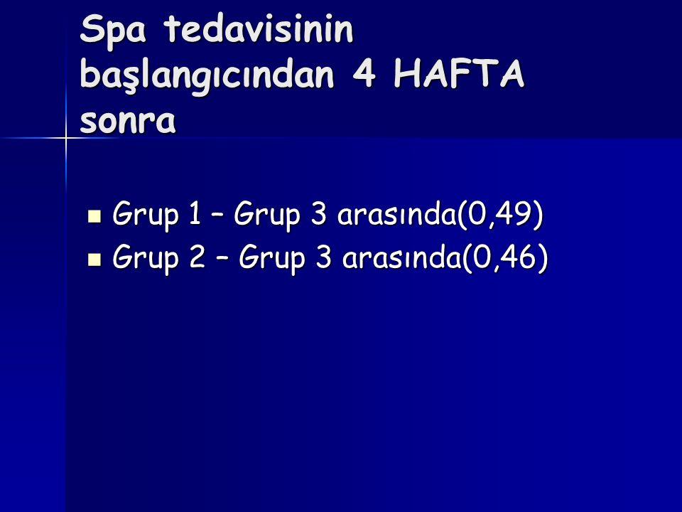 Spa tedavisinin başlangıcından 4 HAFTA sonra Grup 1 – Grup 3 arasında(0,49) Grup 1 – Grup 3 arasında(0,49) Grup 2 – Grup 3 arasında(0,46) Grup 2 – Gru