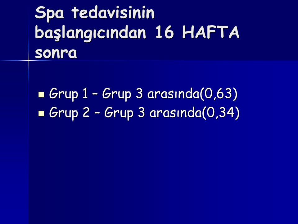 Spa tedavisinin başlangıcından 16 HAFTA sonra Grup 1 – Grup 3 arasında(0,63) Grup 1 – Grup 3 arasında(0,63) Grup 2 – Grup 3 arasında(0,34) Grup 2 – Gr