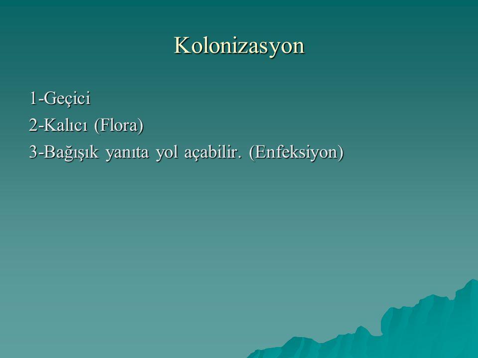 Kolonizasyon 1-Geçici 2-Kalıcı (Flora) 3-Bağışık yanıta yol açabilir. (Enfeksiyon)