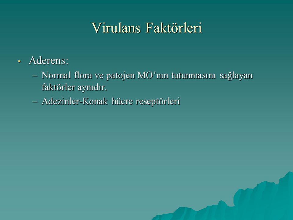 Virulans Faktörleri Aderens: Aderens: –Normal flora ve patojen MO'nın tutunmasını sağlayan faktörler aynıdır. –Adezinler-Konak hücre reseptörleri