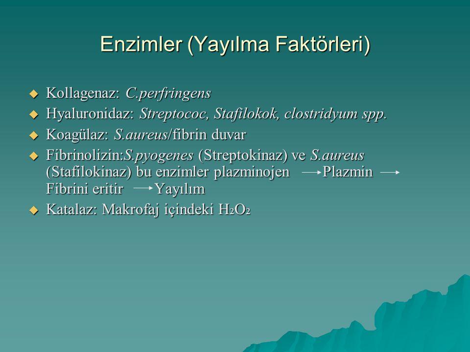 Enzimler (Yayılma Faktörleri)  Kollagenaz: C.perfringens  Hyaluronidaz: Streptococ, Stafilokok, clostridyum spp.  Koagülaz: S.aureus/fibrin duvar 