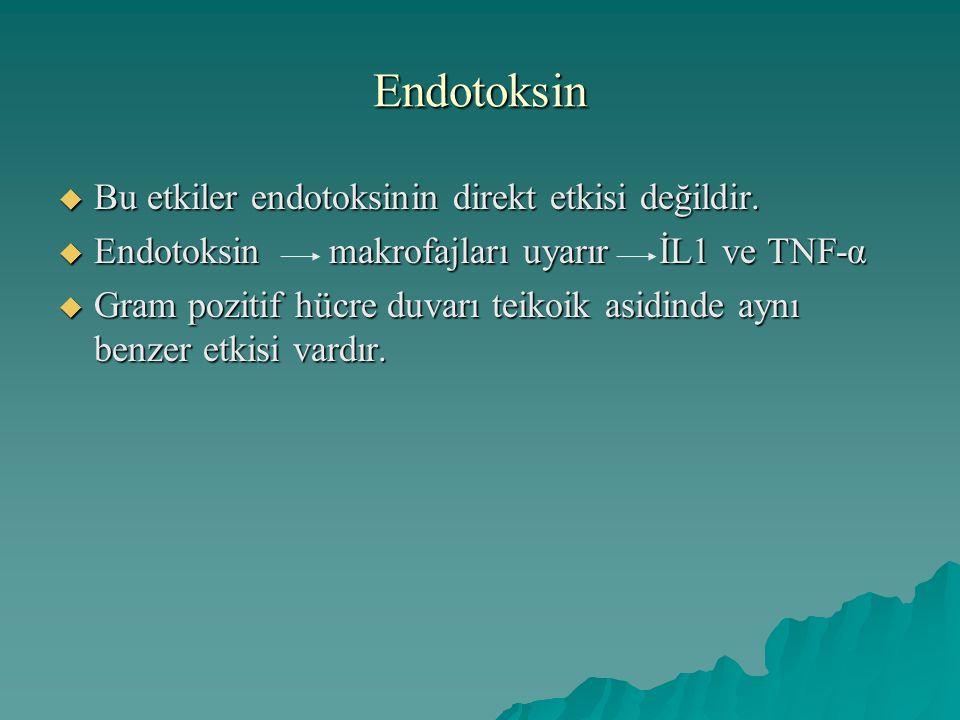 Endotoksin  Bu etkiler endotoksinin direkt etkisi değildir.  Endotoksin makrofajları uyarır İL1 ve TNF-α  Gram pozitif hücre duvarı teikoik asidind