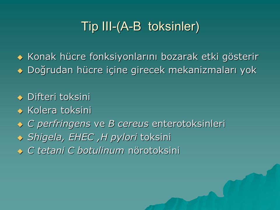 Tip III-(A-B toksinler)  Konak hücre fonksiyonlarını bozarak etki gösterir  Doğrudan hücre içine girecek mekanizmaları yok  Difteri toksini  Koler