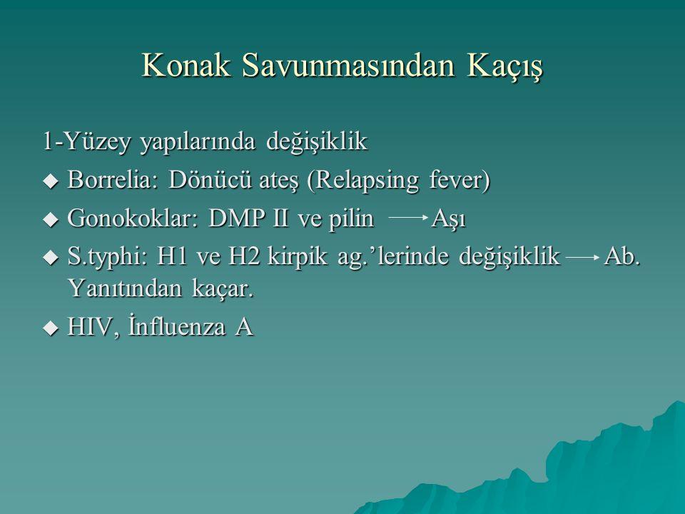Konak Savunmasından Kaçış 1-Yüzey yapılarında değişiklik  Borrelia: Dönücü ateş (Relapsing fever)  Gonokoklar: DMP II ve pilin Aşı  S.typhi: H1 ve