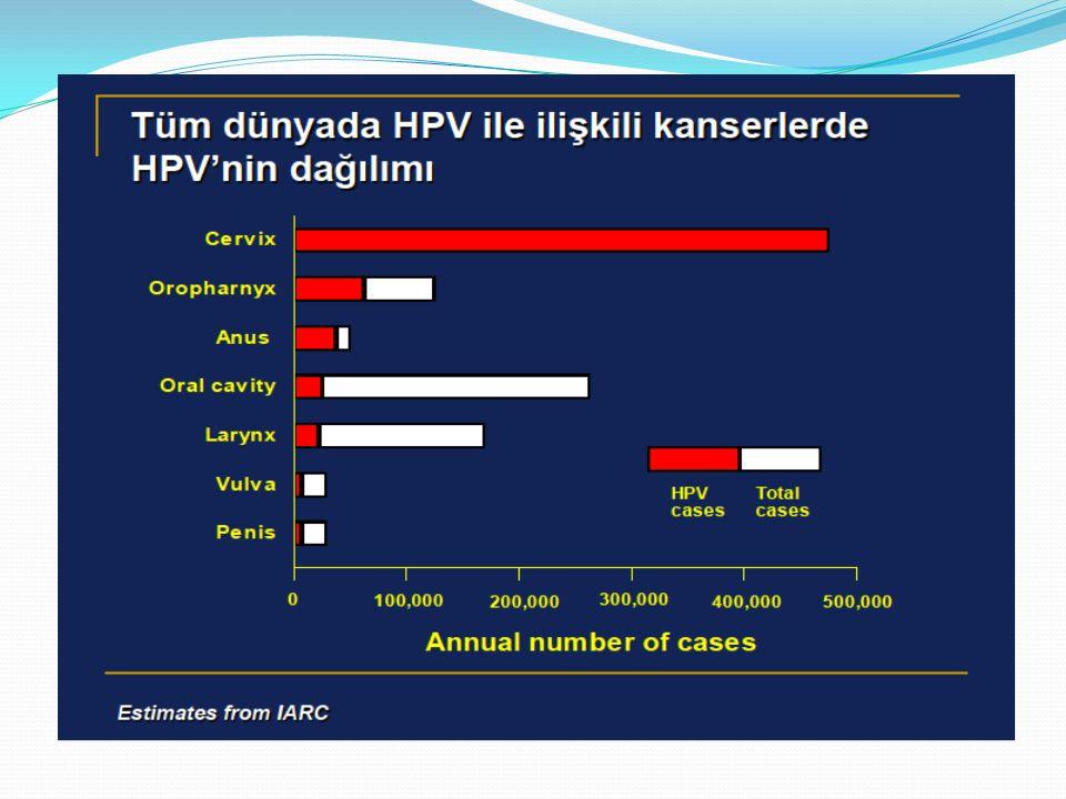 HPV Günümüzde human papilloma virusunun (HPV), servikal kanserin gelişiminde en önemli etiyolojik ajan olduğu üzerinde durulmaktadır.