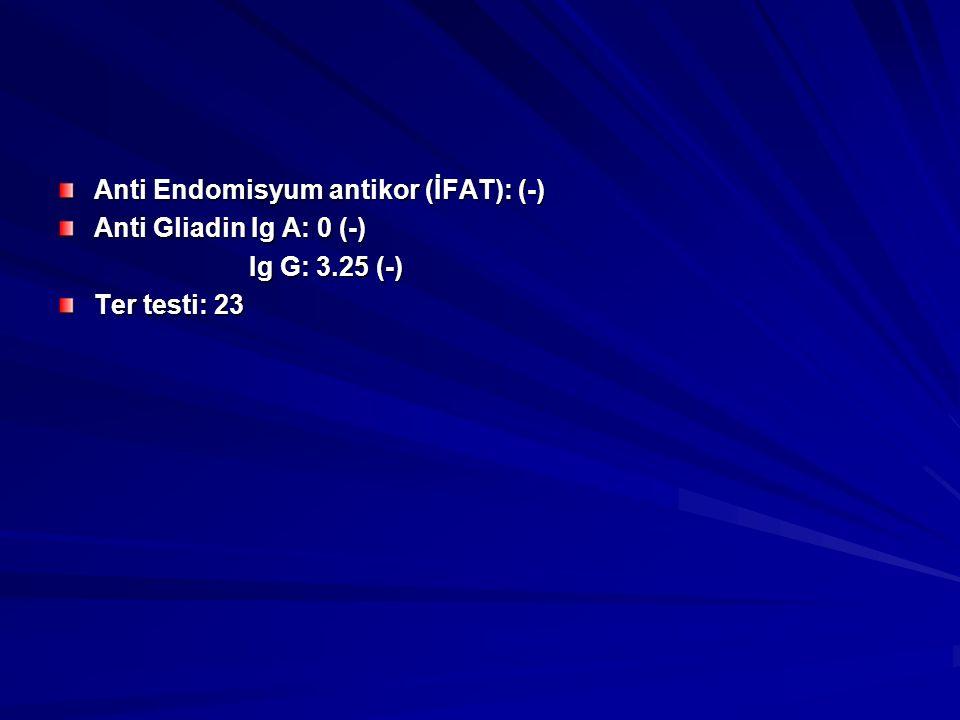 Anti Endomisyum antikor (İFAT): (-) Anti Gliadin Ig A: 0 (-) Ig G: 3.25 (-) Ig G: 3.25 (-) Ter testi: 23
