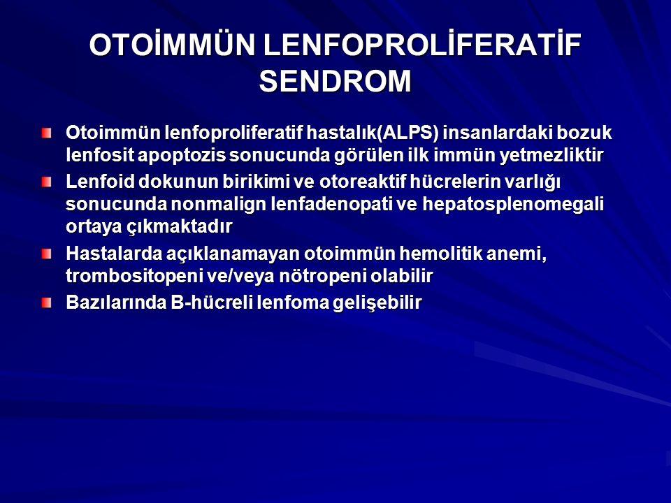 OTOİMMÜN LENFOPROLİFERATİF SENDROM Otoimmün lenfoproliferatif hastalık(ALPS) insanlardaki bozuk lenfosit apoptozis sonucunda görülen ilk immün yetmezl
