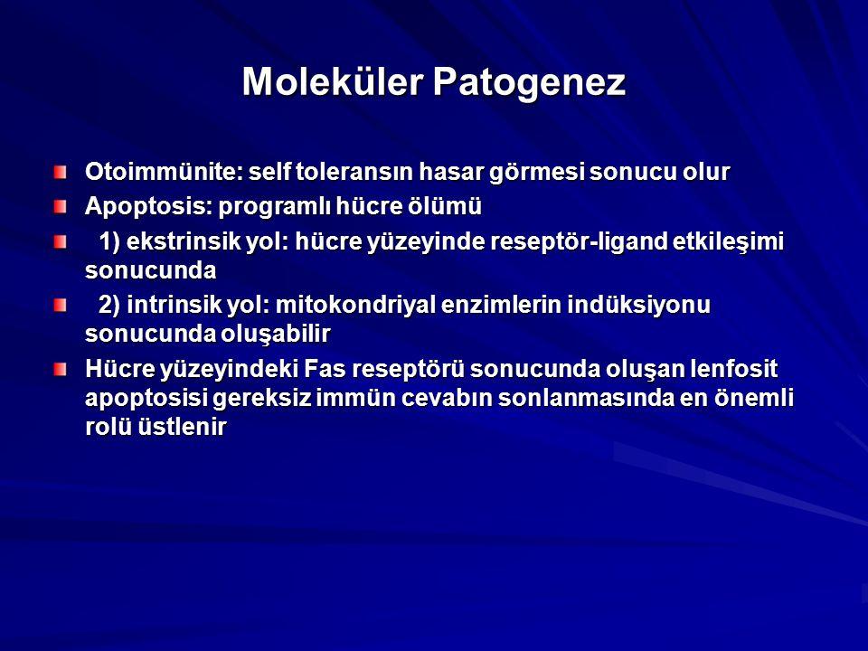 Moleküler Patogenez Otoimmünite: self toleransın hasar görmesi sonucu olur Apoptosis: programlı hücre ölümü 1) ekstrinsik yol: hücre yüzeyinde reseptör-ligand etkileşimi sonucunda 1) ekstrinsik yol: hücre yüzeyinde reseptör-ligand etkileşimi sonucunda 2) intrinsik yol: mitokondriyal enzimlerin indüksiyonu sonucunda oluşabilir 2) intrinsik yol: mitokondriyal enzimlerin indüksiyonu sonucunda oluşabilir Hücre yüzeyindeki Fas reseptörü sonucunda oluşan lenfosit apoptosisi gereksiz immün cevabın sonlanmasında en önemli rolü üstlenir