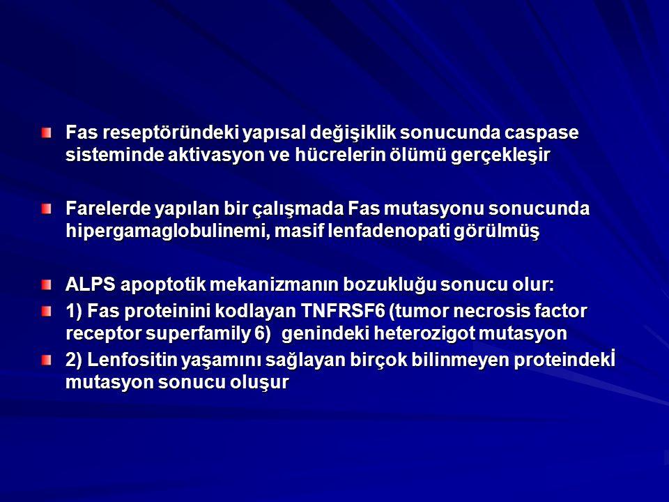 Fas reseptöründeki yapısal değişiklik sonucunda caspase sisteminde aktivasyon ve hücrelerin ölümü gerçekleşir Farelerde yapılan bir çalışmada Fas mutasyonu sonucunda hipergamaglobulinemi, masif lenfadenopati görülmüş ALPS apoptotik mekanizmanın bozukluğu sonucu olur: 1) Fas proteinini kodlayan TNFRSF6 (tumor necrosis factor receptor superfamily 6) genindeki heterozigot mutasyon 2) Lenfositin yaşamını sağlayan birçok bilinmeyen proteindekİ mutasyon sonucu oluşur