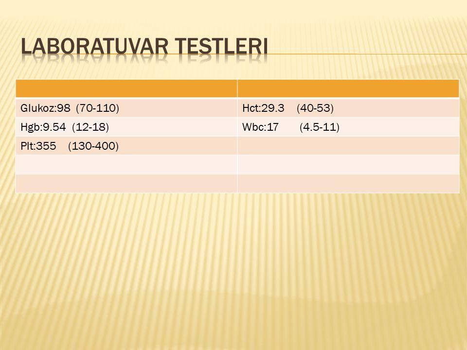 Glukoz:98 (70-110)Hct:29.3 (40-53) Hgb:9.54 (12-18)Wbc:17 (4.5-11) Plt:355 (130-400)