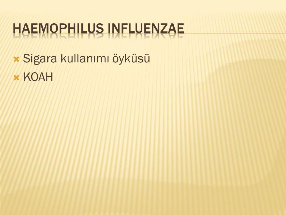  Bakımevinde yaşama  Yakın zamanda grip geçirmiş olma  IV madde bağımlılığı