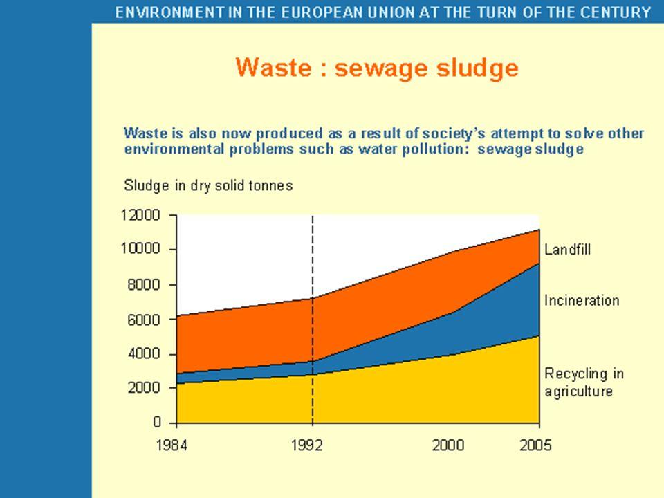 Arıtma çamuru ve atık kompostunun bitki gelişimine etkisi