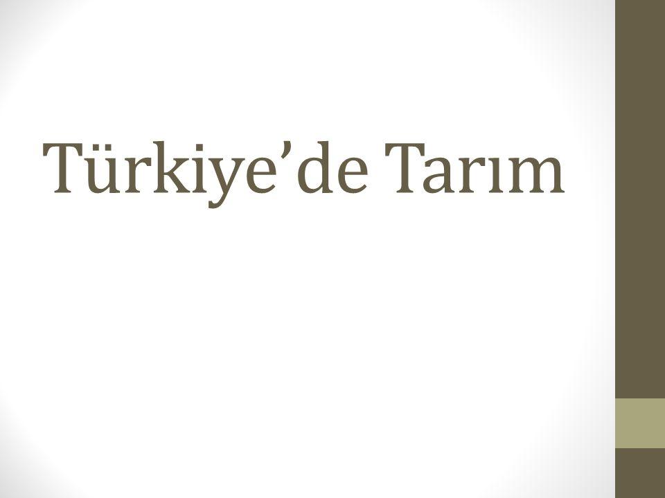 Türkiye de Tarım İnsanların toprağı işleyerek ekme ve dikme yoluyla ondan ürün elde etmesi faaliyetine tarım denir.