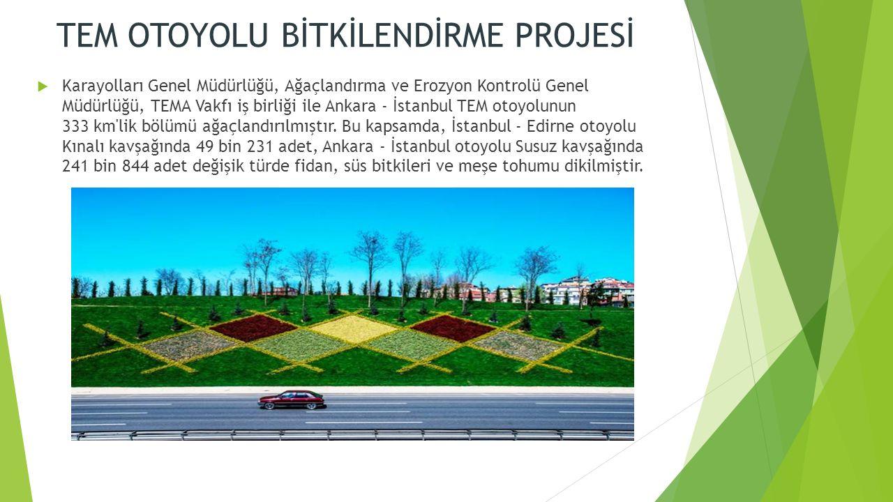 TEM OTOYOLU BİTKİLENDİRME PROJESİ  Karayolları Genel Müdürlüğü, Ağaçlandırma ve Erozyon Kontrolü Genel Müdürlüğü, TEMA Vakfı iş birliği ile Ankara - İstanbul TEM otoyolunun 333 km lik bölümü ağaçlandırılmıştır.