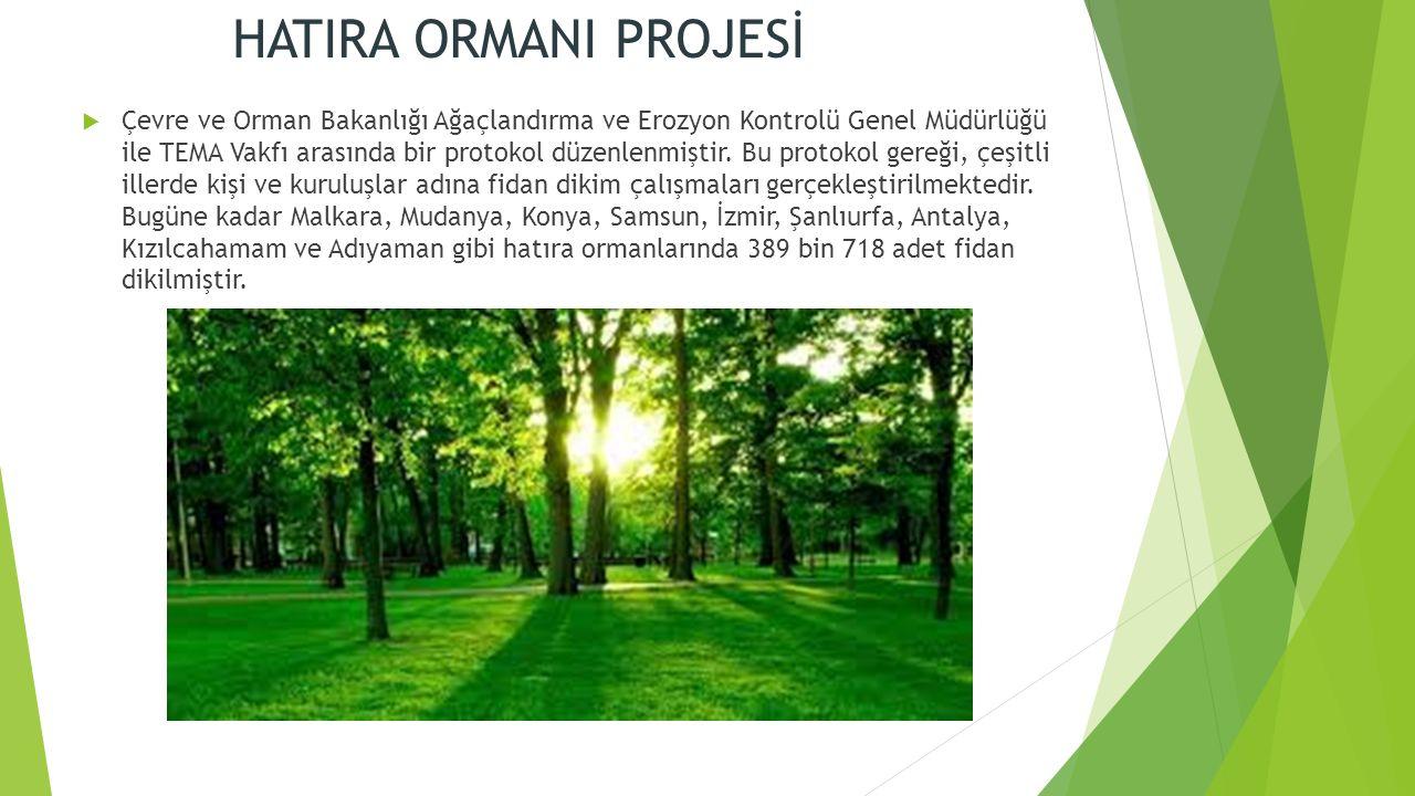 HATIRA ORMANI PROJESİ  Çevre ve Orman Bakanlığı Ağaçlandırma ve Erozyon Kontrolü Genel Müdürlüğü ile TEMA Vakfı arasında bir protokol düzenlenmiştir.