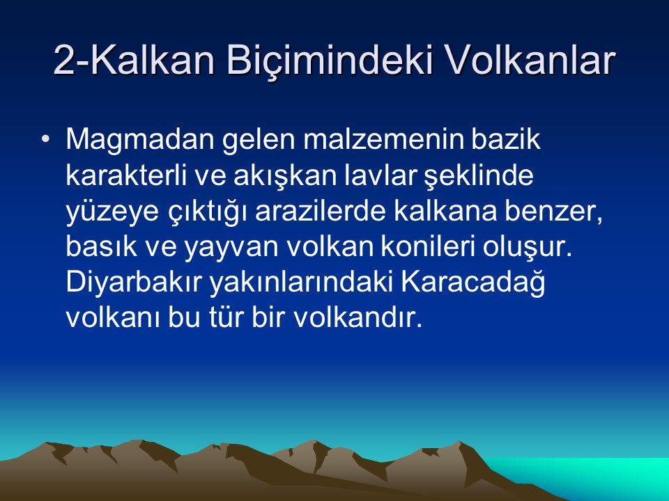 2-Kalkan Biçimindeki Volkanlar Magmadan gelen malzemenin bazik karakterli ve akışkan lavlar şeklinde yüzeye çıktığı arazilerde kalkana benzer, basık ve yayvan volkan konileri oluşur.