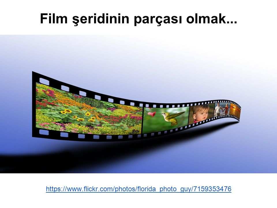 https://www.flickr.com/photos/florida_photo_guy/7159353476 Film şeridinin parçası olmak...