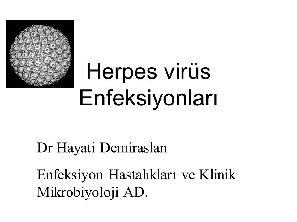 Herpes virüs Enfeksiyonları Dr Hayati Demiraslan Enfeksiyon Hastalıkları ve Klinik Mikrobiyoloji AD.