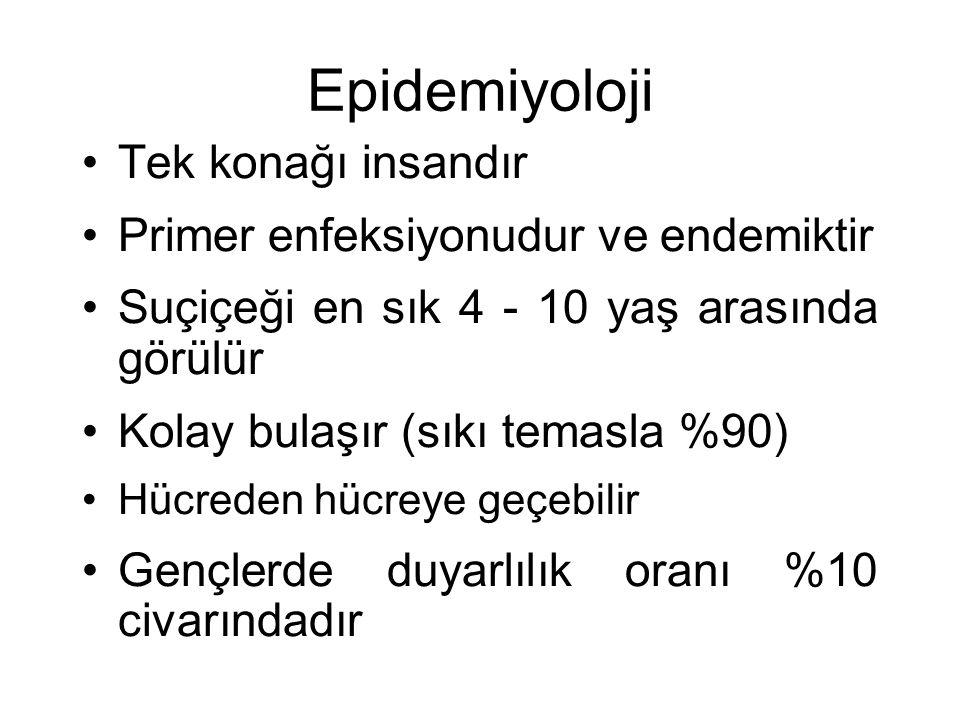 Epidemiyoloji Tek konağı insandır Primer enfeksiyonudur ve endemiktir Suçiçeği en sık 4 - 10 yaş arasında görülür Kolay bulaşır (sıkı temasla %90) Hüc