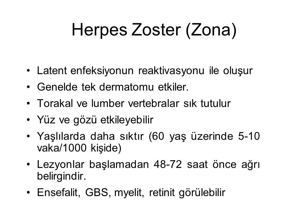 Herpes Zoster (Zona) Latent enfeksiyonun reaktivasyonu ile oluşur Genelde tek dermatomu etkiler. Torakal ve lumber vertebralar sık tutulur Yüz ve gözü