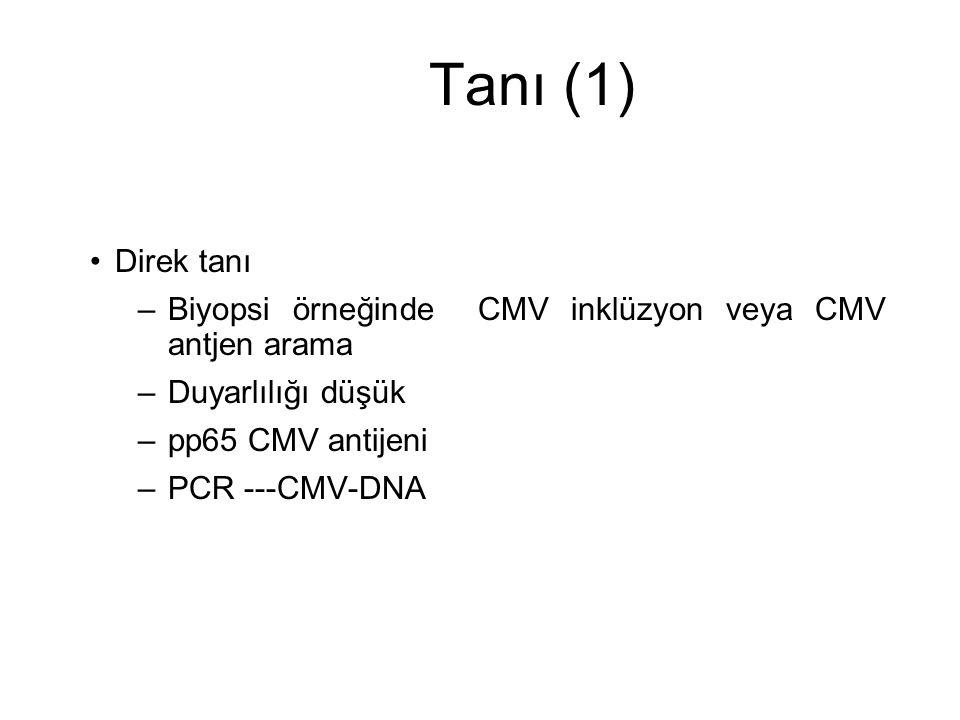Tanı (1) Direk tanı –Biyopsi örneğinde CMV inklüzyon veya CMV antjen arama –Duyarlılığı düşük –pp65 CMV antijeni –PCR ---CMV-DNA