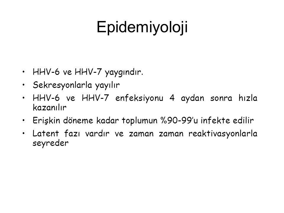 Epidemiyoloji HHV-6 ve HHV-7 yaygındır. Sekresyonlarla yayılır HHV-6 ve HHV-7 enfeksiyonu 4 aydan sonra hızla kazanılır Erişkin döneme kadar toplumun