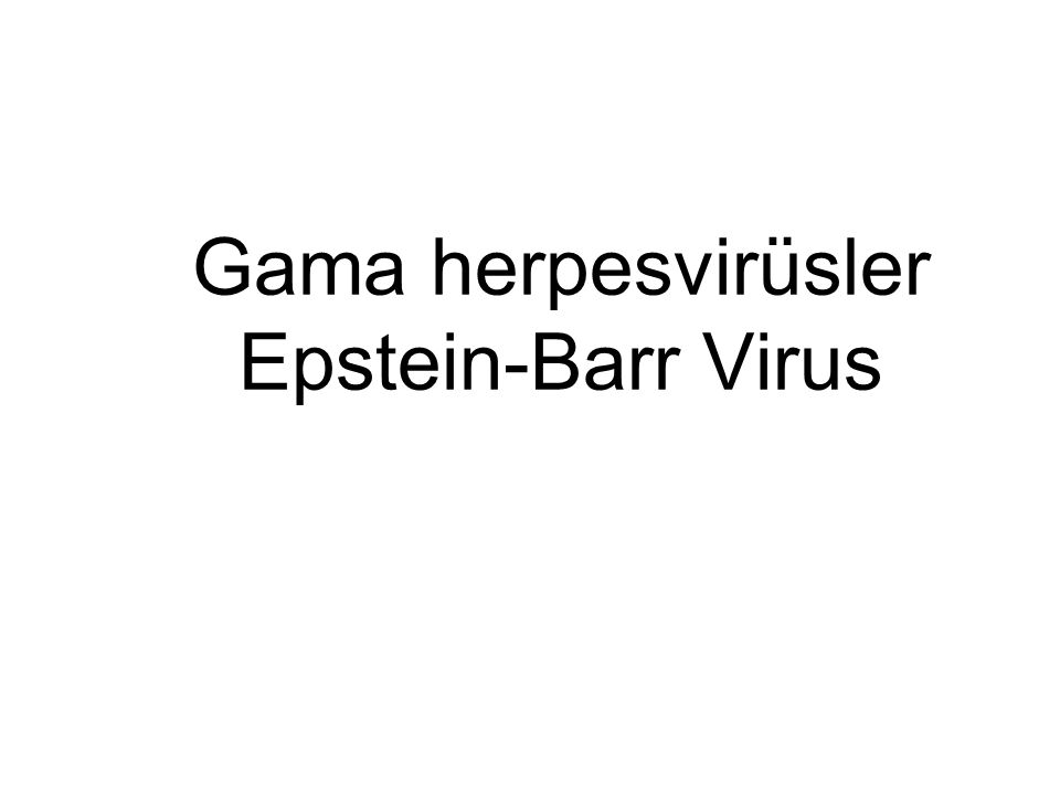 Gama herpesvirüsler Epstein-Barr Virus