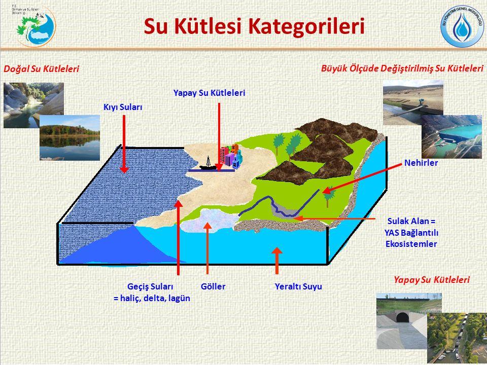 20 Yapay Su Kütleleri Sulak Alan = YAS Bağlantılı Ekosistemler Nehirler Geçiş Suları = haliç, delta, lagün Kıyı Suları Yeraltı SuyuGöller Su Kütlesi Kategorileri Doğal Su Kütleleri Büyük Ölçüde Değiştirilmiş Su Kütleleri Yapay Su Kütleleri