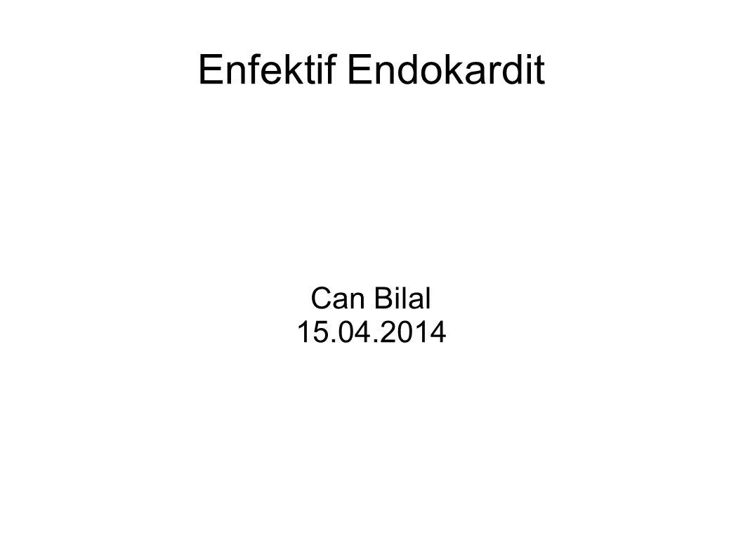 Enfektif Endokardit Can Bilal 15.04.2014