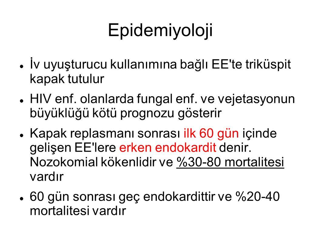 Epidemiyoloji İv uyuşturucu kullanımına bağlı EE'te triküspit kapak tutulur HIV enf. olanlarda fungal enf. ve vejetasyonun büyüklüğü kötü prognozu gös