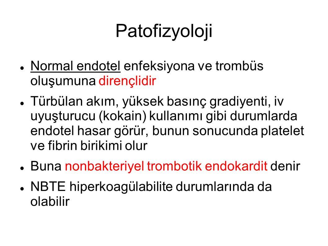 Patofizyoloji Normal endotel enfeksiyona ve trombüs oluşumuna dirençlidir Türbülan akım, yüksek basınç gradiyenti, iv uyuşturucu (kokain) kullanımı gi