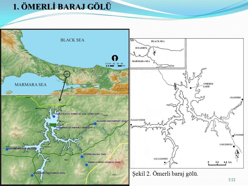 Tablo 1.Nütrient yük kaynakları ve Ömerli Baraj Gölü için olan katkıları.