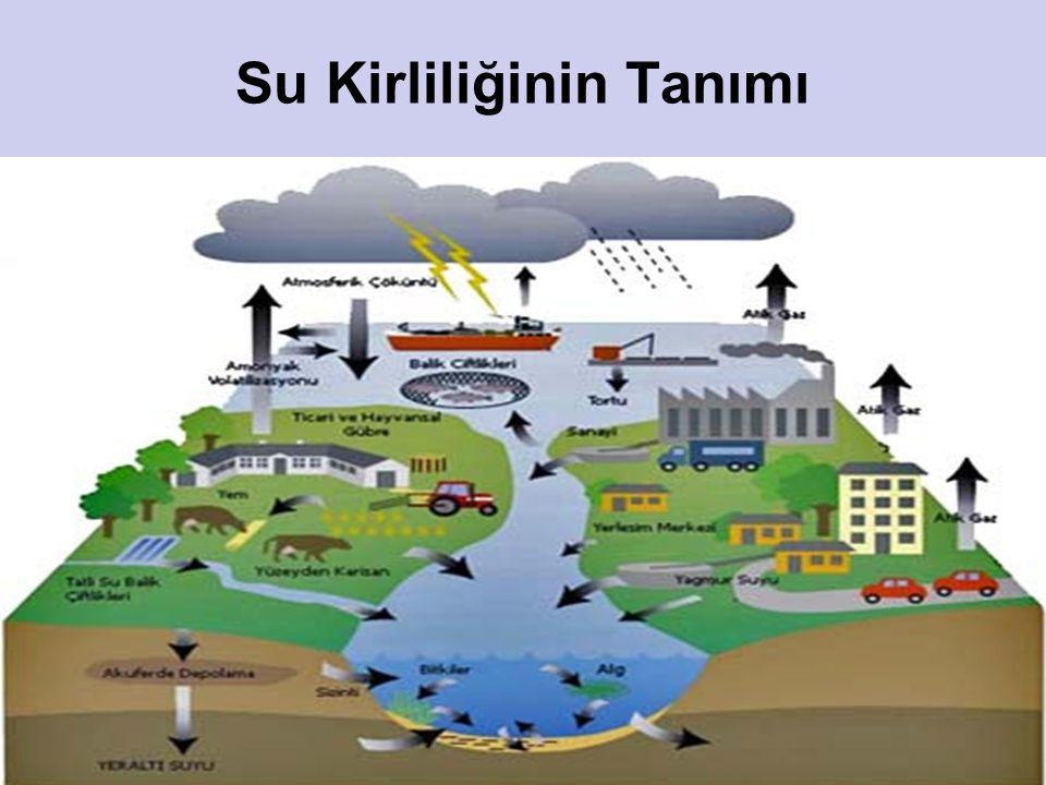 11 Su Kirliliğinin Tanımı Kısaca, suya karışan maddeler suların fiziksel, kimyasal ve biyolojik özelliklerini değiştirerek su kirliliği diye adlandırı